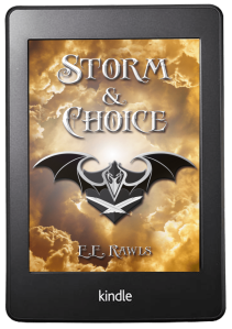 storm and choice, coming of age fantasy series, female and male protagonist books, fantasy adventure magic, fantasy books for teens, christian fantasy books for teens, fantasy series for kids, adventure books for kids, christian epic fantasy series, Draev Guardians, E.E. Rawls,